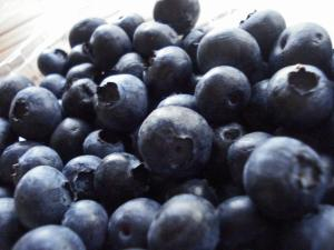 Post 28 Blueberries