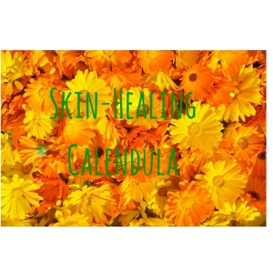 Skin-HealingCalendula